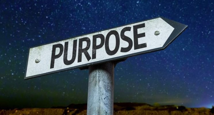 The pursuit of purpose, personality & potential